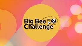 big_bee_Challenge.jpg