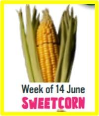 SweetcornWeek.jpg